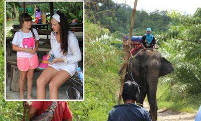 ระทึก! ช้างตกมันกระทืบควาญดับ พานักท่องเที่ยวเตลิดเข้าป่า