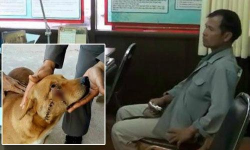 ศาลตัดสินจำคุกคนฟันปากหมาที่หนองคาย1ปี