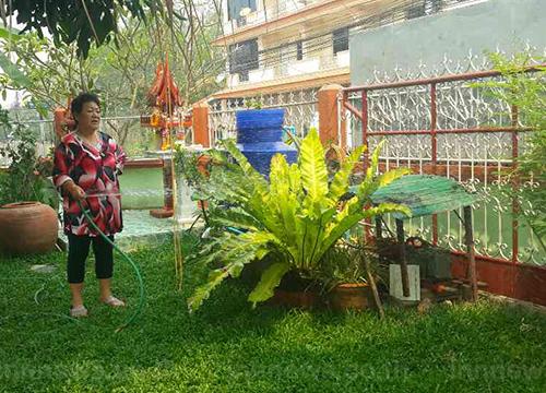 ลำปางแจ้ง ปชช.รดน้ำต้นไม้ลดวิกฤตหมอกควัน