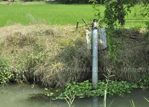 เกษตรกรโคราชไม่สนคำเตือนชลประทานเร่งสูบน้ำเพาะปลูก