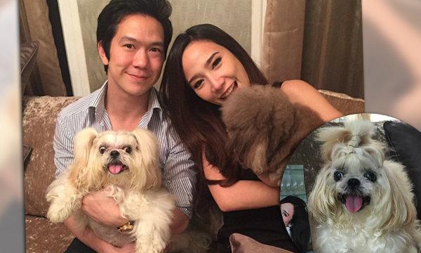 แฟนๆ ให้กำลังใจ อั้ม พัชราภา สูญเสียสุนัขคู่ใจกว่า 17 ปี