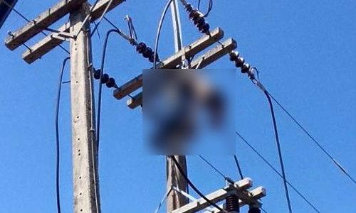 สุดสลด! เจ้าหน้าที่ซ่อมไฟฟ้า ถูกช็อตดับคาเสาไฟ