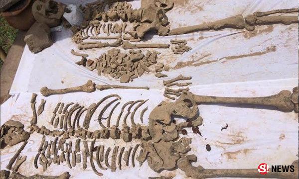 พบโครงกระดูกมนุษย์อายุราวสองพันปี เจ้าอาวาสฝันมีคนขอให้ช่วย