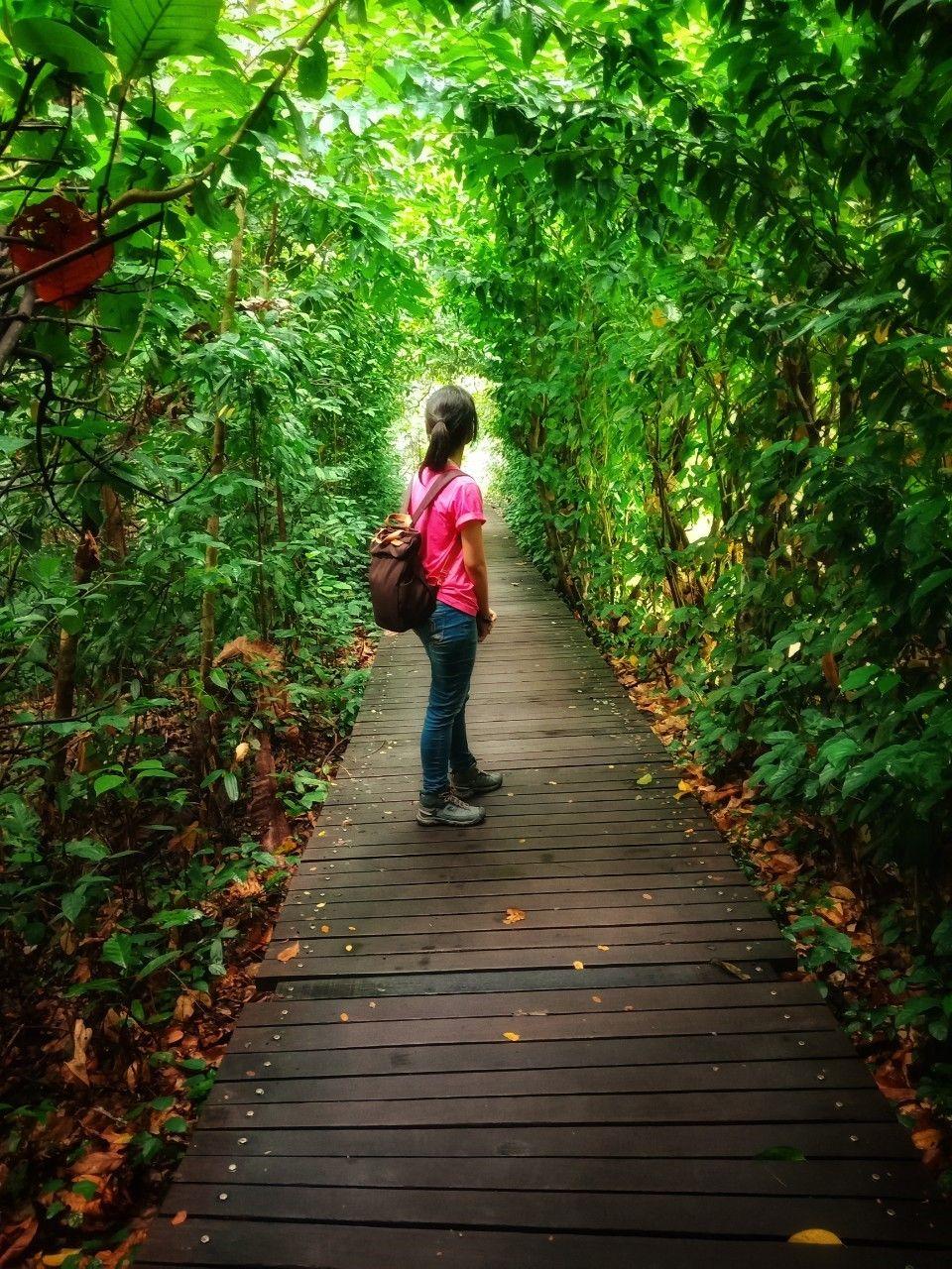 ซ้ายก็ป่า ขวาก็ป่า ข้างหน้าก็ยังไม่เห็นจุดหมาย กลับหลังก็ไม่ได้...สู้ๆนะชีวิต