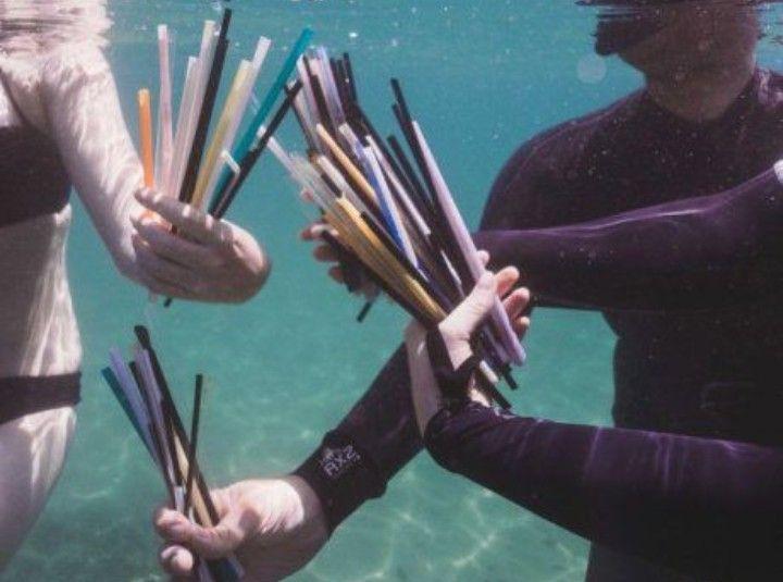 หลอดมากมายที่พบใต้ท้องทะเล และมหาสมุทร มันยังอยู่ในสภาพที่ไม่ย่อยสลายแต่อย่างใด